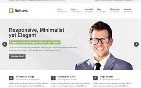 robust responsive multipurpose wordpress theme