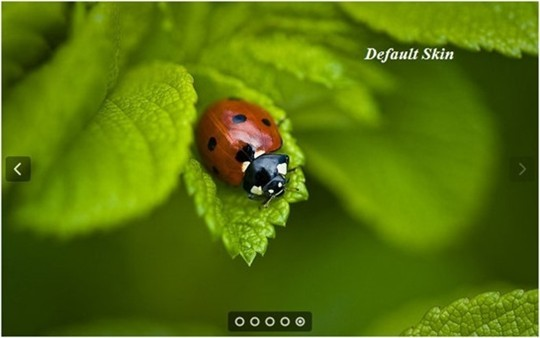royalslider – touch enabled jquery image gallery