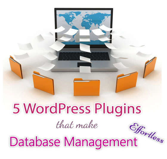 WordPress Plugins That Make Database Management Effortless