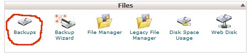 Backup Using cPanel