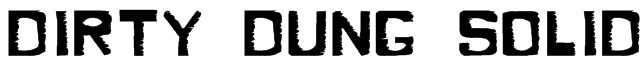 Dirty Dung Solid Font