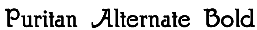 Puritan Alternate Bold Font
