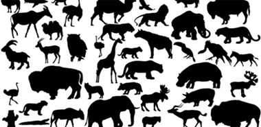 animal,creative,download,illustration,illustrator,original,pack,photoshop,vector,african,modern,silhouette,unique,vectors,quality,fresh,high quality,vector graphic vector