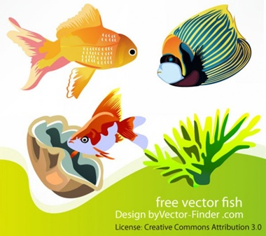 creative,download,illustration,illustrator,original,pack,photoshop,vector,fish,coral,ocean,modern,unique,vectors,quality,fresh,clam,high quality,vector graphic,goldfish vector