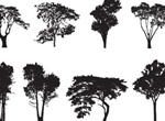 8 Tree Silhouette Vector Pack