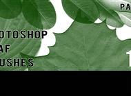 Photoshop Leaf Brushes Part 2