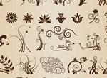 Floral Flourish Vector Elements Set