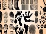 Hand Foot Tire Track Prints Vector Set