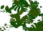 PLANTS BRUSHES