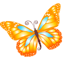 Butterfly, Orange Icon