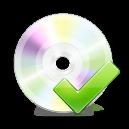 Disk, Ok Icon