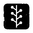 Logo, Newswire, Square Icon