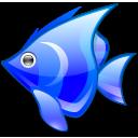 Animal, Blue, Fish Icon