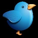 Bird, Blue, Twitter Icon