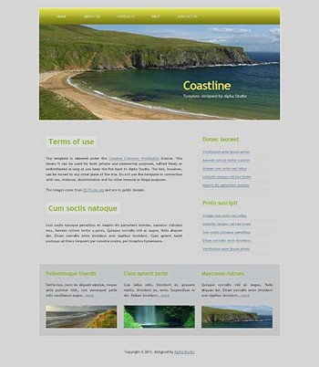 business,corporate,travel website template